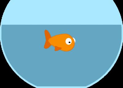 Spark Goldfish KLOE